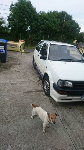 Toyota Starlet Boxy Boxy Starlet For Sale In Mallow Cork From Paddy Odonoghue 50