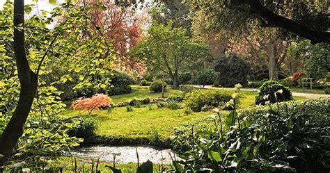 giardino di ninfa roma lazio nel giardino di ninfa il sole 24 ore