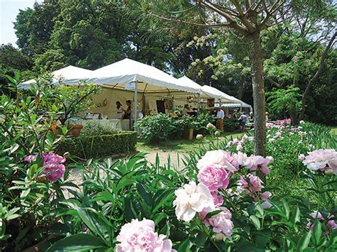 giardini corsini firenze giardini di maggio