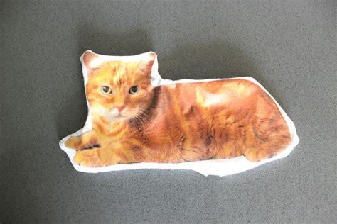 Cat Pillow by Custom Cat Pillow Diy Tutorial