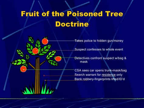 fruit of the tree doctrine crime processing