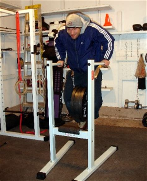 weight bench with dip bar bench press weighed pushups or neither page 2