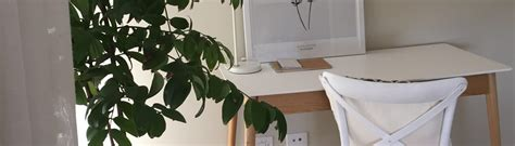 short term indoor plant hire newcastle greenscene