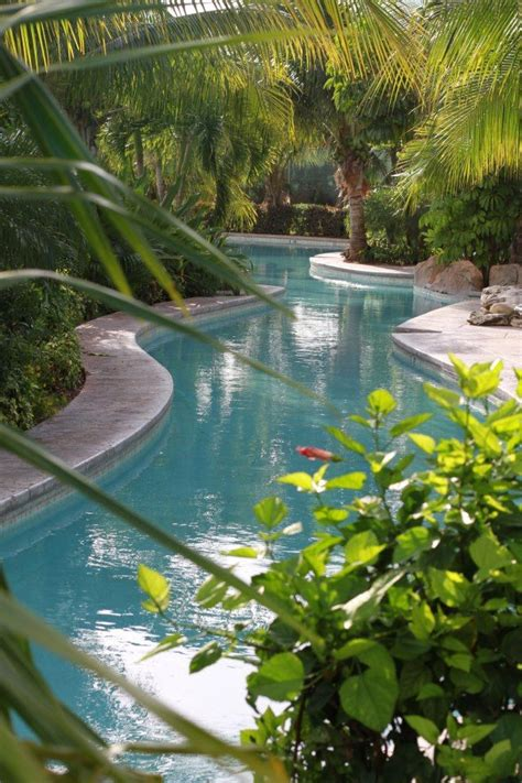 one end of pool with lazy river backyard oasis lazy river swimming pools pinterest