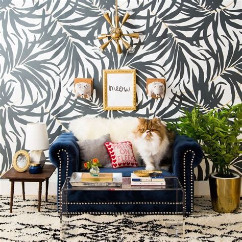 We Are The Cat On Tour by Tour This Feline Room Modern Interior Design And Celebrate