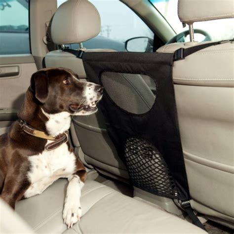 car dogs car barrier