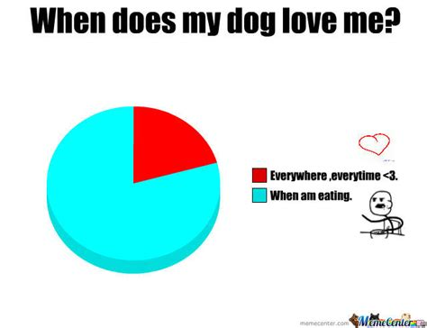 does my puppy me when does my me by tusia meme center