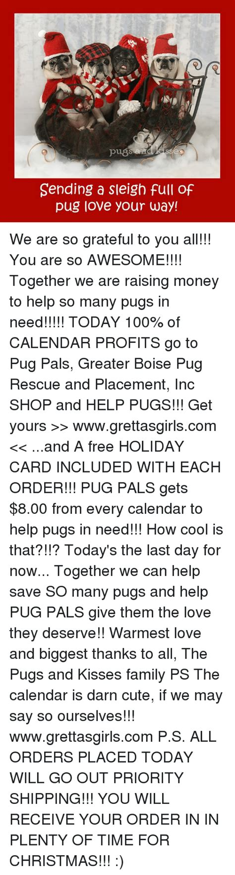 pug pals boise pug memes of 2016 on sizzle cars
