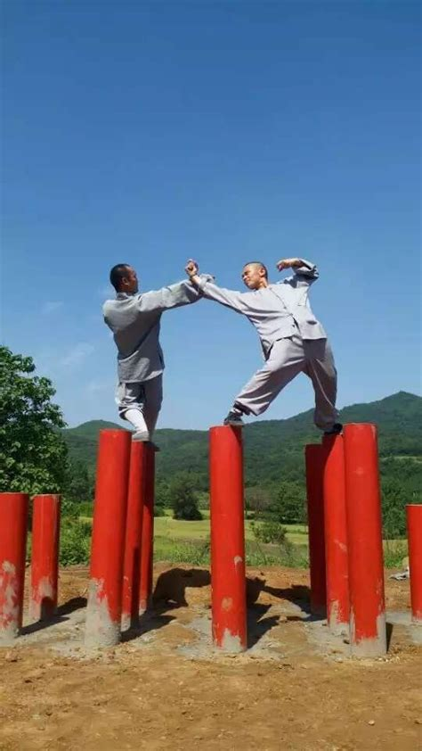 best shaolin 25 best ideas about shaolin kung fu on kung