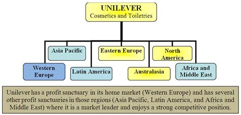 layout strategy of unilever unilever s strategies for competing in foreign markets