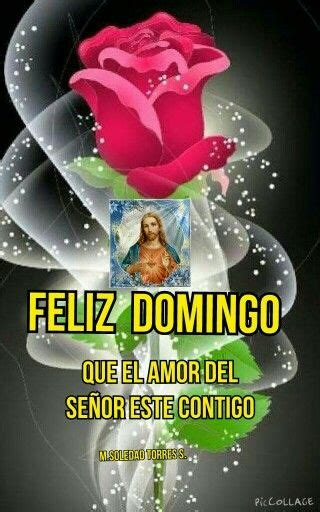 imagenes de feliz domingo grosero 160 best images about domingo on pinterest amigos posts