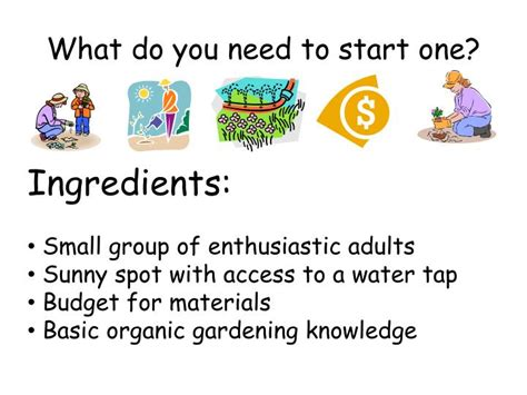 Top 28 What Do You Need To Start A Garden 17 Best What Do You Need To Start A Vegetable Garden