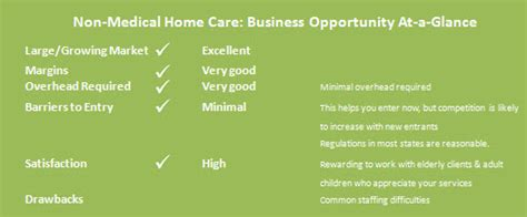 non medical home care business plan beautiful non medical home care business plan 6 non