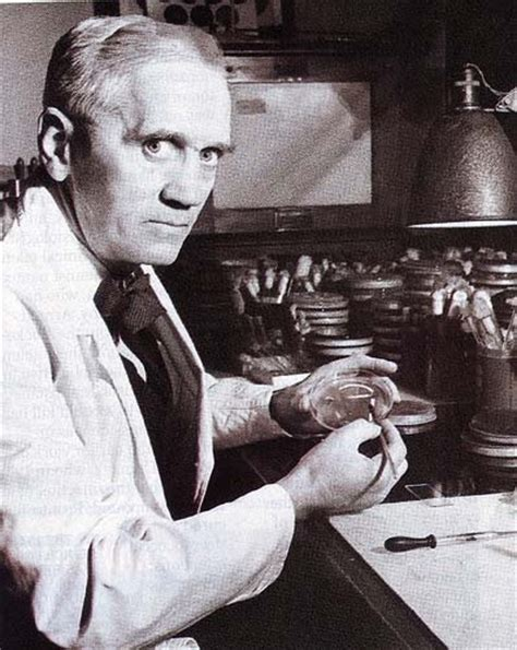 alexander fleming invention of penicillin biography com pin by dolores marlena on inventors pinterest