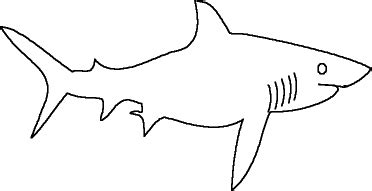 Sharks In The Classroom Enchanted Learning Software Great White Shark Template