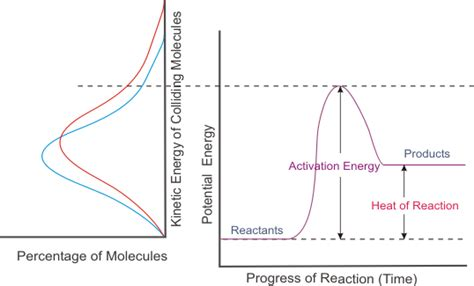 what factor affects the color of a factors affecting reaction rates