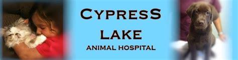 cypress animal hospital in covina cypress animal welcome www cypresslakeanimalhospital