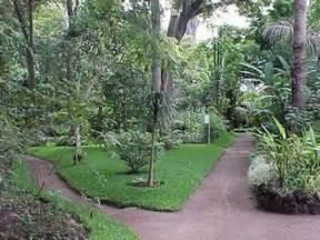 jardin botanico guatemala city guatemala hours