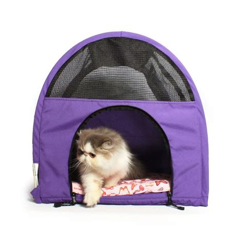 Pet Travel Cargo Best In Show 46 best images about sturdi products on