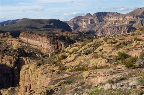 and fish az photo fish creek hill tonto national forest apache