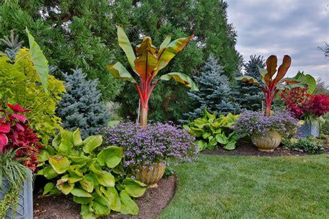 Tropical Gardening Ideas Tropical Garden Ideas Landscape Tropical With Steps