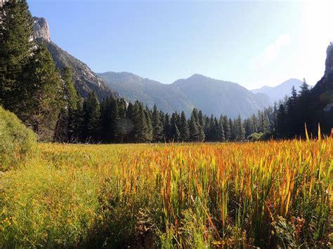kings canyon national park fresno county california