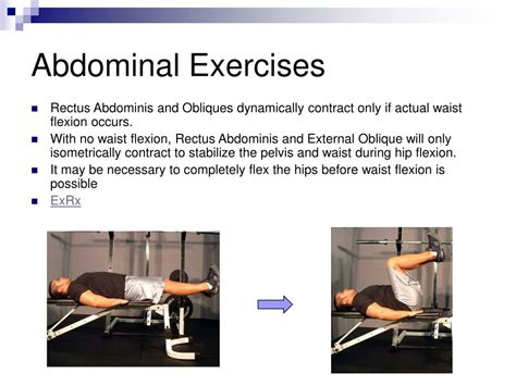 ppt exercises for the spine powerpoint presentation id 169396