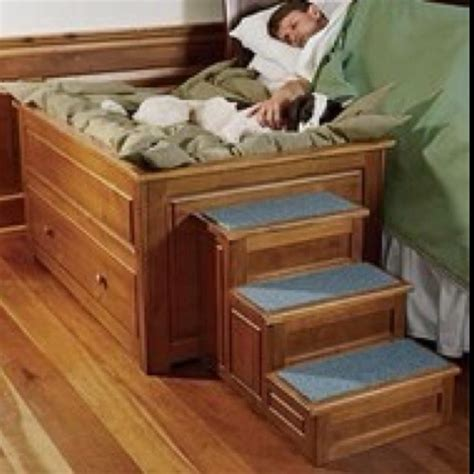 Co Sleeper For Dogs by Co Sleeping With Your For The Home