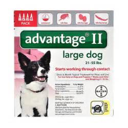 advantage for dogs 21 55 lbs 4 pack advantage ii for dogs 21 55 lbs 4 month supply vetdepot