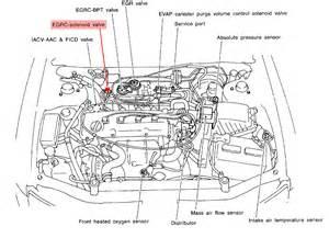 1999 Nissan Maxima Vacuum Hose Diagram Nissan Maxima Purge Valve Location Get Free Image About