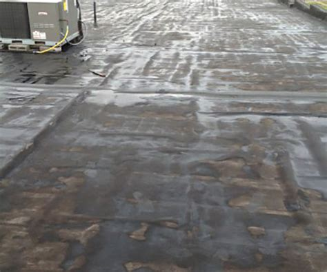 Flat Roof Problems Flat Roof Coatings Km Commercial Roofing