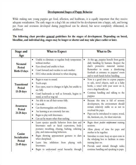 puppy development chart 26 behavior chart exles sles