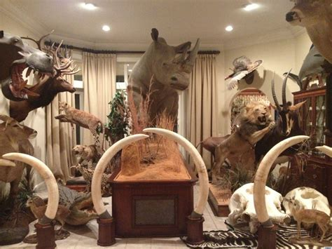 taxidermy home decor a taxidermy filled home is a shocking surprise for party