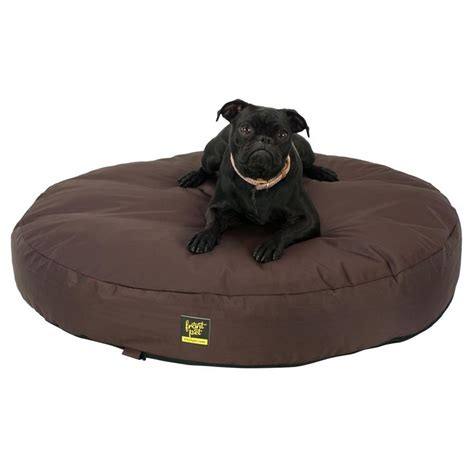 chew proof bed best chew proof beds images on pet beds beds and costumes
