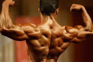 one compulsory poses back biceps