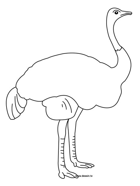 Printable Coloring Pages Of African Animalsl L