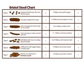 best bristol stool chart photos 2017 blue maize