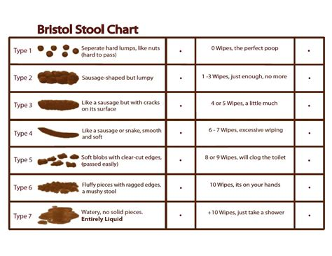 Bristol Stool Chart For by Bristol Stool Chart
