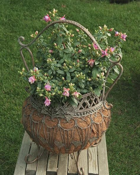 Planter Plants by Clever Plant Container Ideas The Micro Gardener
