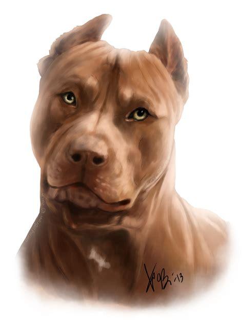 pitbull the dogs drawings pitbull
