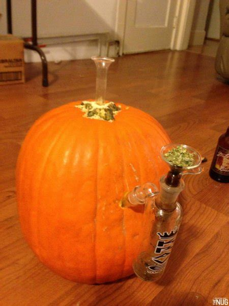 pumpkin bongs  weed jack olanterns  halloween