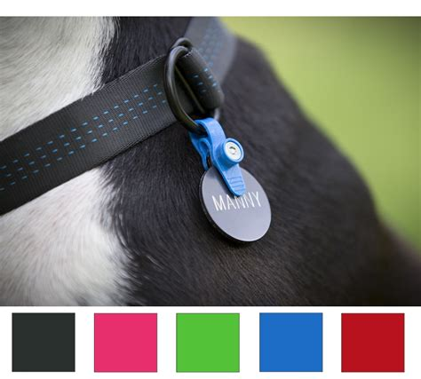 tag on collar collar id tag holder silencer makes id tags easy to get on