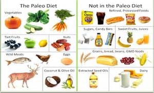 the drawbacks of different healthy diets paleo vegan and vegetarian a