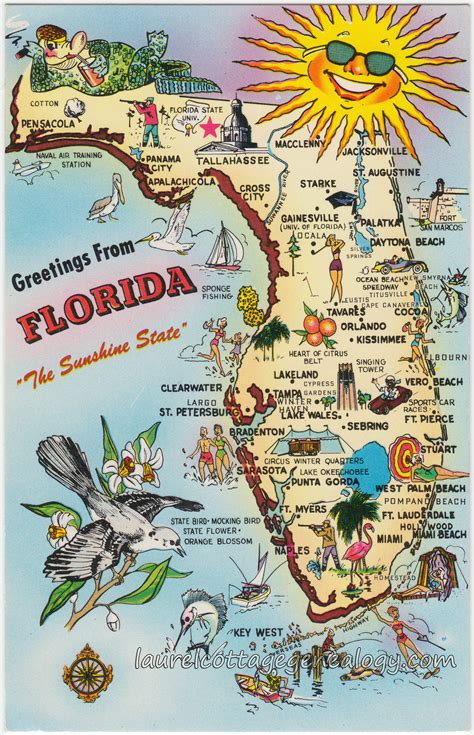 State Of Florida Number Search Greetings From Florida Laurel Cottage Genealogy