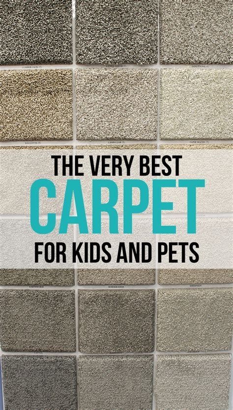 best carpet for pets the best carpet for and pets thecraftpatchblog