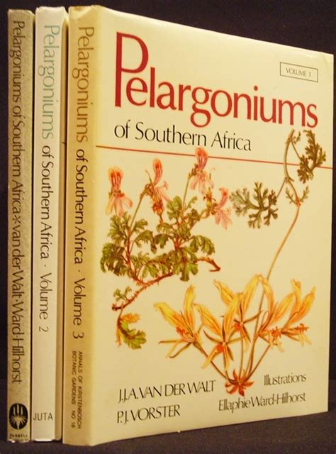 pelargoniums of southern africa auction 15