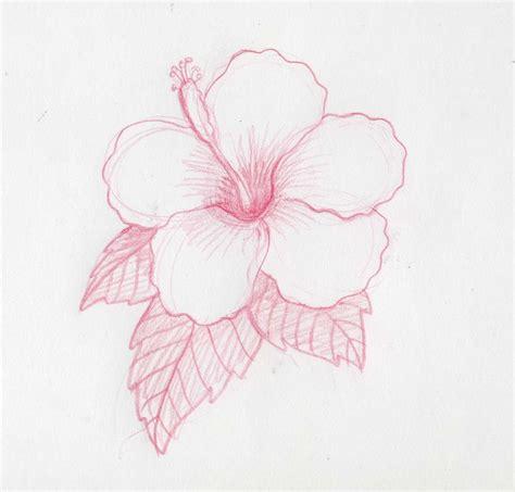 imagenes de flores sombreadas 17 mejores ideas sobre como dibujar flores en pinterest