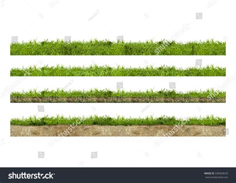 grass section layers of green grass section with soil isolated on white