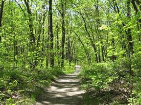 Hiking Trails Hiking Trails In The United States