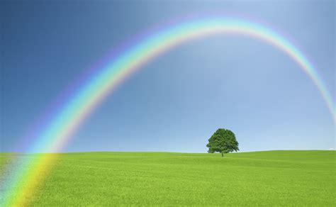 imagenes de un arco iris 191 d 243 nde nace el arco iris vix